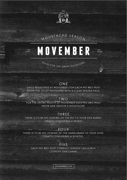 The Official Moustache Rules For Movember